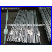 DM cheap canada steel T post with punching holes