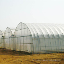 100mic winter keep out the cold greenhouse film