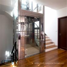 Ascenseur vertical de maison de passager de bâtiment de bâtiment vertical de villa de maison