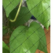 Red de estiramiento para Biomat de coco