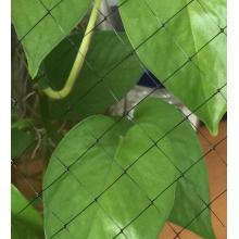 Stretch Net For Coconut Biomat