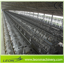 Best price A type battery cage system for chicken farm with CE
