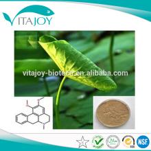 Professionnel Fabricant 10: 1 poudre d'extrait de lotus / 10: 1 Feuille de lotus / extrait de feuille de lotus 10: 1