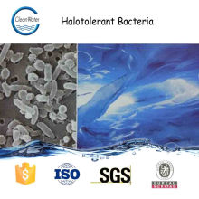 HALOTOLERANT BACTERIA wastewater and garbage treatment