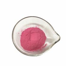 High Quality Fruit Powder Spray Dried  Dragon fruit powder Juice Powder For Making Juice