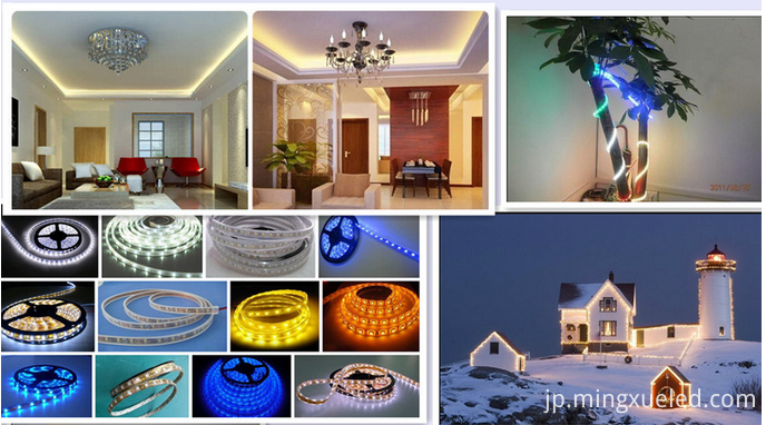 smd2835 led strip light product show