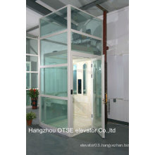 OTSE small single person elevator with glass shaft