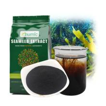 Kelp fertilizer seaweed powder extract ascophyllum nodosum 100% water soluble