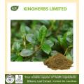 Extracto de hoja de arándano Flavones 10% por UV, 5: 1 10: 1