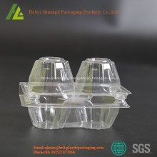 Rectangular Clear transparent plastic egg tray