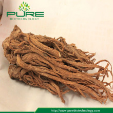 Buy Angelica root or Dong Quai Herb