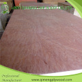 Bintangor Face Poplar Core 18mm Packing Plywood with Cheap Price