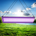 80W de espectro completo de aluminio Led Grow Light