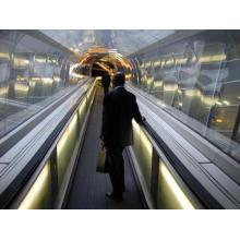 Moving Walk Elevator with Energy-Saving System Used Japan Technology (FJ6000)