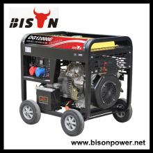 Bison China Zhejiang 3000Watt 3KVA 3KW mano de inicio Digital Silent Diesel Generator