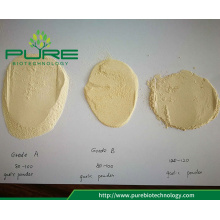 High Quality Garlic Powder 80-100 mesh