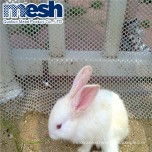 Factory price plastic poultry chicken aviary netting extruded plastic mesh