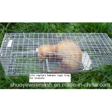 Multi Catch faltbare Tierfallen Käfig Nagetiere Käfig