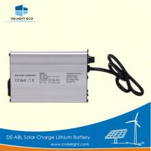 DELIGHT Batería de litio con luz de calle solar de tipos