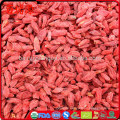 Dried Fruit Goji berry imports from china to pakistan bulk sell wolfberry
