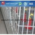 Broiler-Huhn, Huhn-Gebrauch und Landwirtschafts-Ausrüstungs-Art Geflügel-Landwirtschafts-Ausrüstung