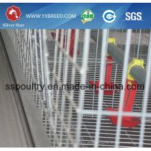 6X3-Tierschicht-manuelle Käfige Galvanisierte / heiße eingetauchte / PVC beschichtete Huhn-Käfige / Ei, das Henne / Batterie-Käfig für Südafrika legt