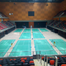 BWF Internation Elite Badminton Δικαστήριο Ματ