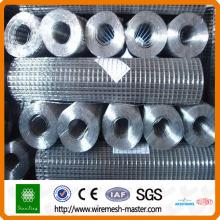 Maille soudée de treillis métallique d'acier de 1/2 pi
