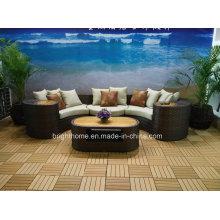 Antique New Design Leisure Garden Sofa