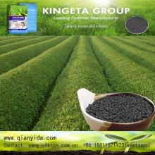 Direct supply organic Carbon Based npk fertilizer