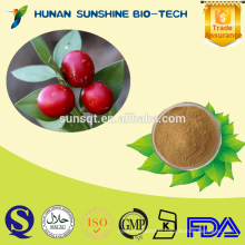 High quality Butchers broom extract powder 10% Ruscogenin