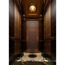 Auto Cheap Residential Lift Elevator in China