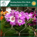 Garten Blumen Edelstahl Draht Mesh Zaun heißen Verkauf
