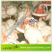 Leon automatic auger feed system for poultry