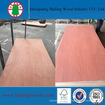 Lápis Vermelho Cedro EV Red Elm / Bintangor Plywood