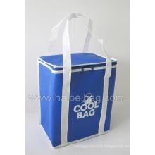 Eco Ice Cool Bag, sac de refroidissement isolé, sac de réfrigérateur de pique-nique (HBCOO-12)