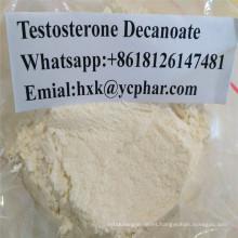 Probar el polvo esteroide del CAS del Decanoate de la testosterona de Deca 5721-91-5 Gain Muscle Ban