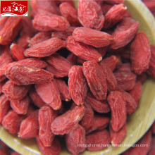 Wholesale goji dried fruits storage containers