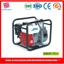 High Quality Water Pumps for Agricultural Use (WP30X)