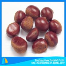 Châtaigne Chinois Dandong origianl 100% naturel vert nouveau chocolat frais