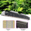 Best Performance Agricultural Hydroponics LED Grow Lights