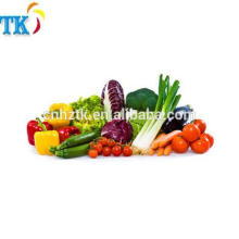 Wasserlösliches Pulver Lebensmittelfarbpulver