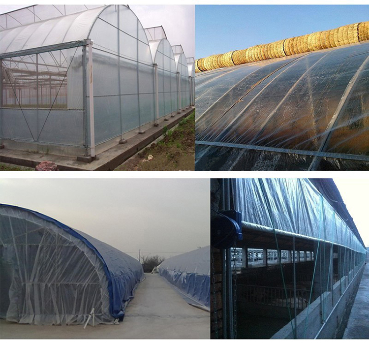 China-greenhouse-cover-clear-plastic-film-for