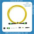 MPO/APC Sm Fiber Optical Patchcord