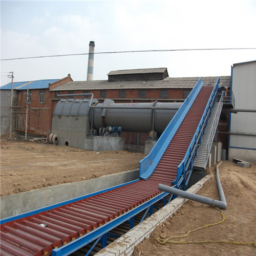 Pulper Feed Conveyors 07