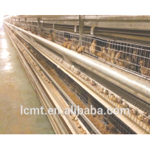 Factory latest research and development of quail eggs cage