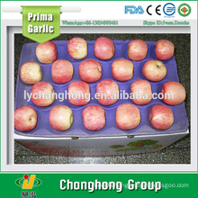 Fuji Apples with Lowest Price
