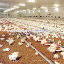 High quality automatic poultry farm control shed