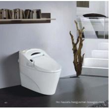 PP/Ceramic Boday Intelligent Toilet (W1508)