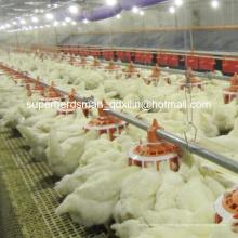 Equipamentos de avicultura automática de alta qualidade para a casa de criadores